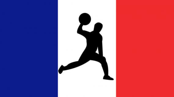 Fédération du Dodgeball Français
