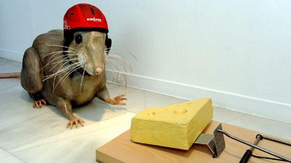Капан за мишки