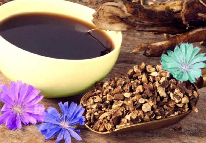 Цикория – безкофеиново кафе с хиляди полезни свойства